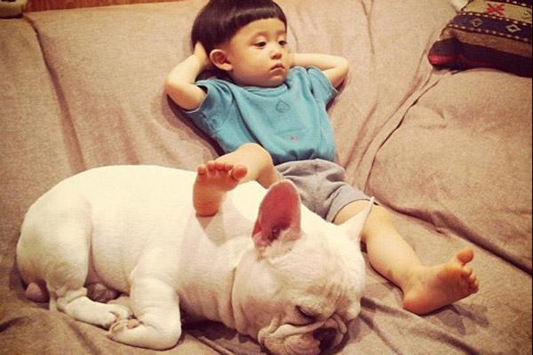 狗为什么喜欢抱人的大腿打飞机?