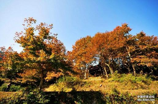 福清市大化山风景区位于福清市镜洋镇,与闽侯县交界的.