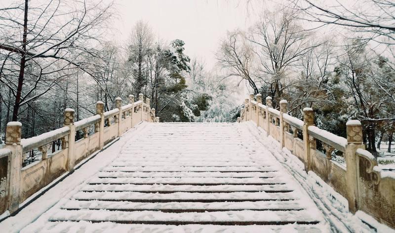 为什么冬天桥面容易结冰但是路面却没有?