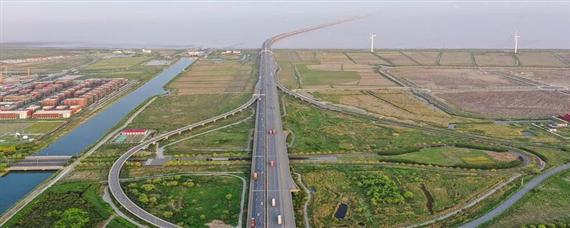 沪芦高速公路是哪到哪里