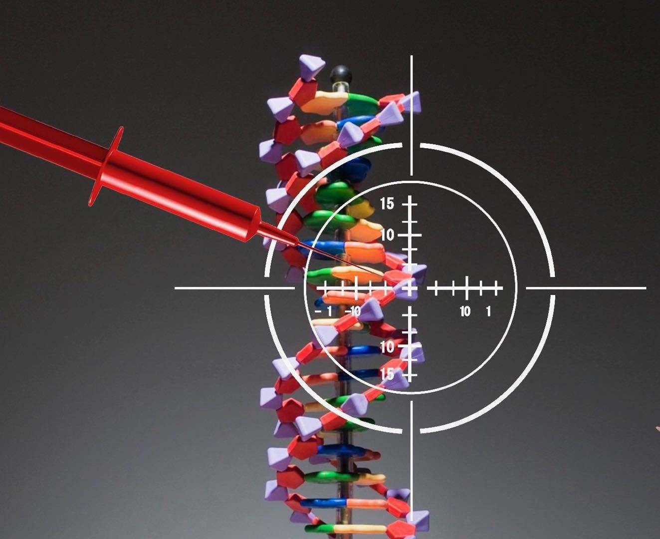 首例艾滋免疫婴儿诞生:为何修改CCR5基因来对抗艾滋?