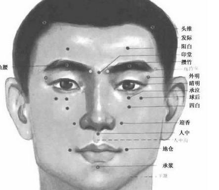 儿童鼻腔结构的高清图