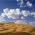 假如沙漠不再豐滿,那它會是什么樣子呢?