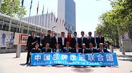 国丹走进联合国