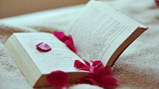 你为什么读不进书?和人格有什么关系?