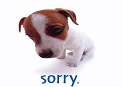 我们为什么不愿意道歉呢?