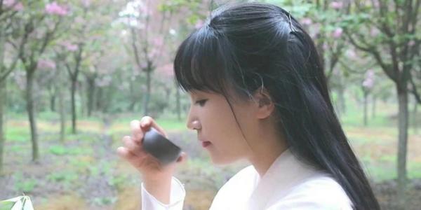 youtube网友热评:李子柒酿荷花酒视频