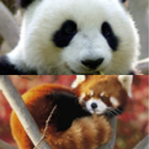 下为小熊猫【亲,新年快乐