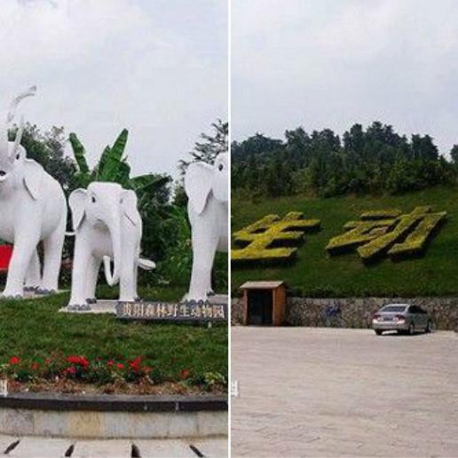 度假旅游 贵阳 相关信息 野生动物园位于贵阳市修文县扎佐镇贵州省