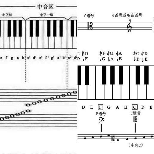 谱号:因为其中心对准哪条线,哪条线就是中央C音,(即:小字一组的C音)所以,又称C谱号。 低音谱号:中心对准四线的F音,又称F谱号。(其音高为小字组的F音) 给你发了两个图,一看就明白了,希望对你有帮助。