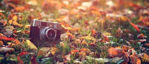 排行榜前十的数码相机品牌