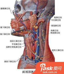 淋巴炎_如何区分慢性淋巴结炎和淋巴瘤