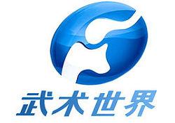 河南武术世界频道