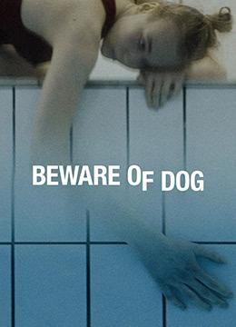 狗一样的人生