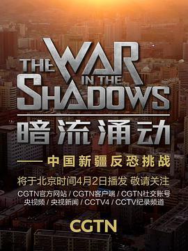 暗流涌动——中国新疆反恐挑战